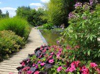 jardins_des_martels_bassin_2_55